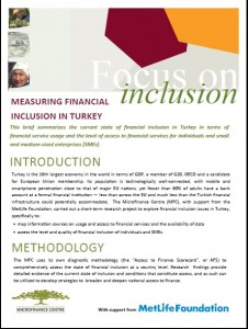 Measuring Financial Inclusin in Turkey