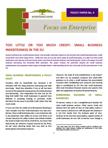 MFC Policy Paper No 4_Too Little or Too Much Credit_Small Business Indebtedness in the EU_2015